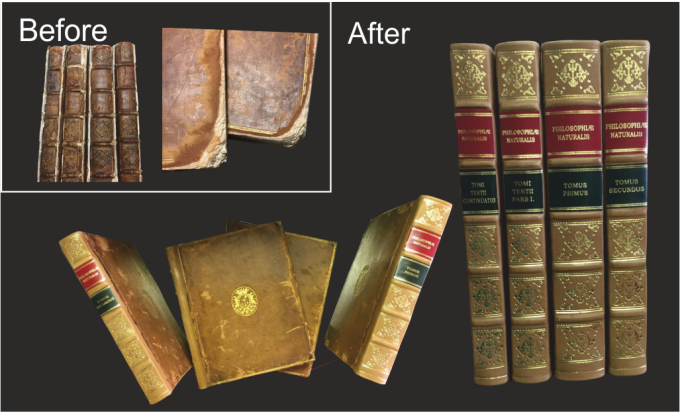 Antiquarian book repair